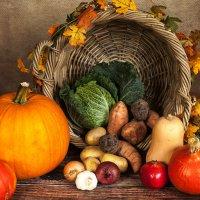 秋の実たち