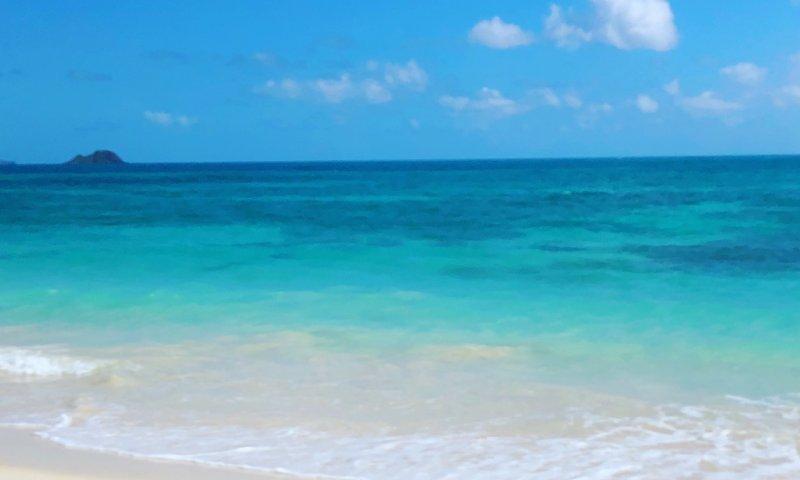 ハワイの海byN